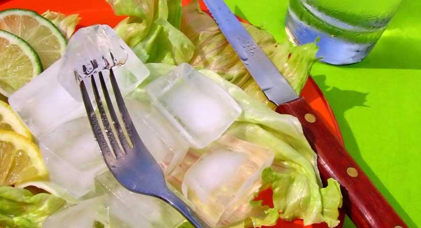 Dietitians-Nutritionist