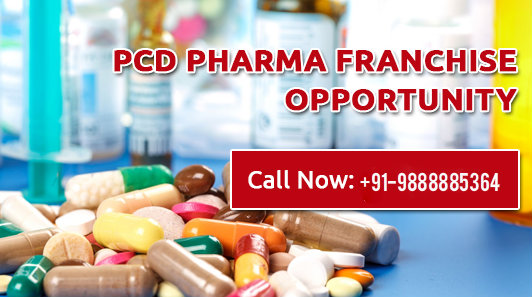 Get List Of the Best Pharma Franchise Companies in India