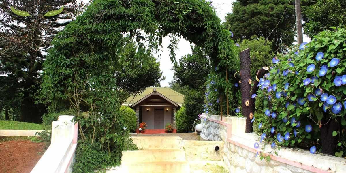 Best Homestay in Thekkady Kerala