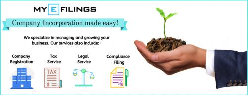 Udyog Aadhar Registration / MSME Registration | MyEfilings