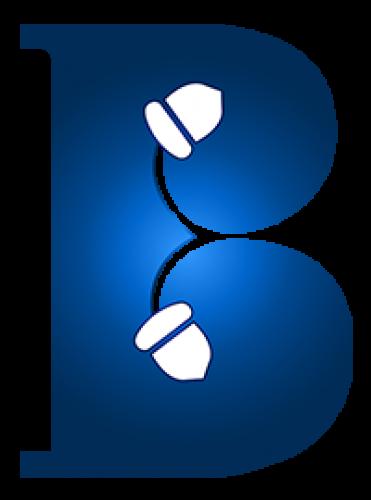 Brandingnuts - Digital Marketing Agency in Hyderbad