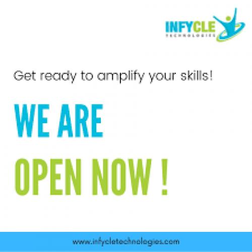 Big Data Training in Chennai | Infycle Technologies