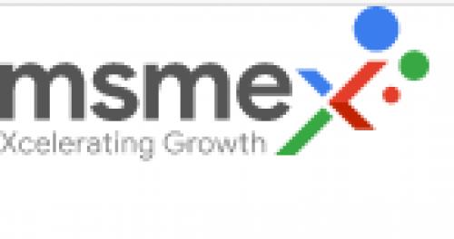 MSMEx