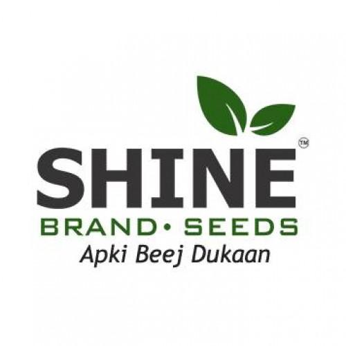 Shine Brand Seeds