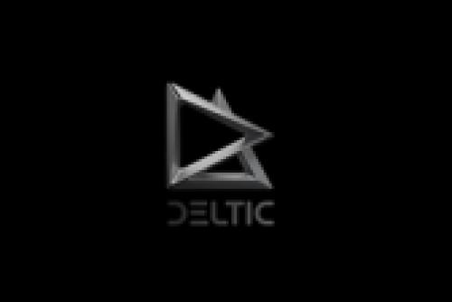 Delta Autocorp LLP