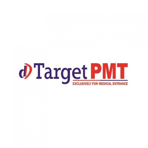 DD Target PMT