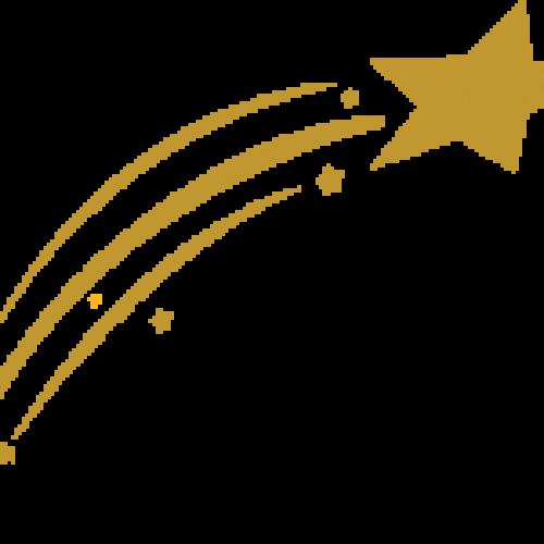 Star Webs Solution - Web Development Company Coimbatore