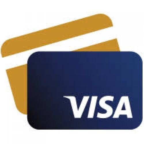 How to get Indian medical attendant visa?
