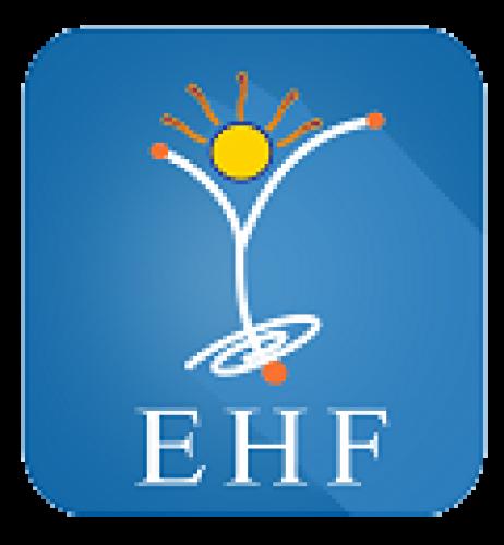 Olympiad EHF Eduheal Foundation Biggest Interactive School