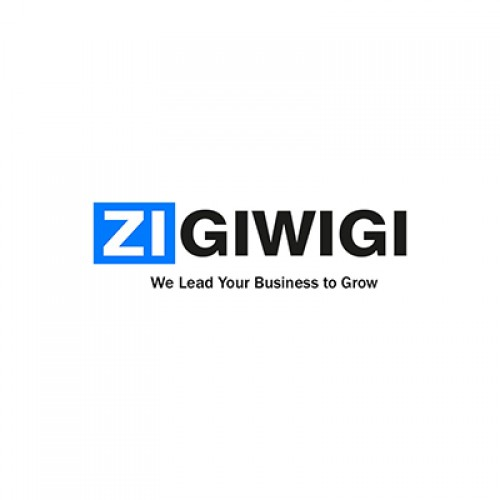Video production | Digital marketing company in Junagadh | Zigiwigi