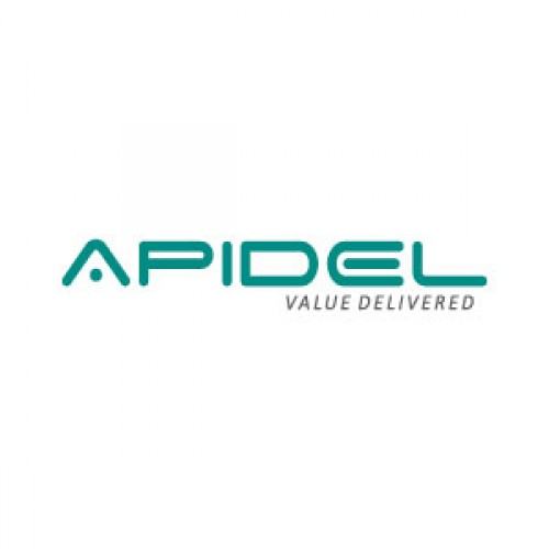 Apidel Technologie's | IT Staffing &  Recruiting Company in Vadodara
